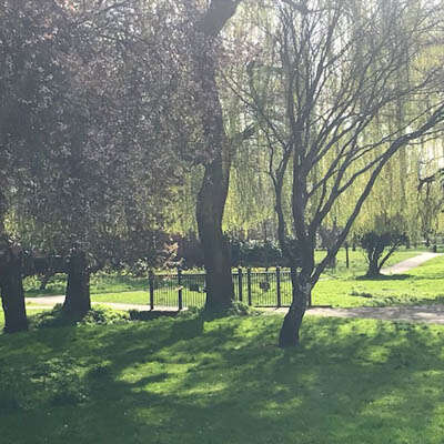 glebe gardens basingstoke